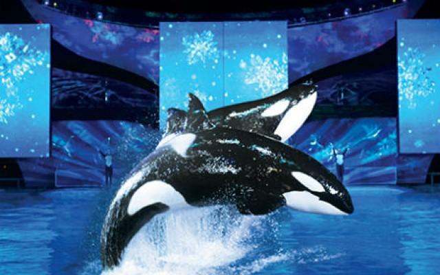 Natal do Sea World
