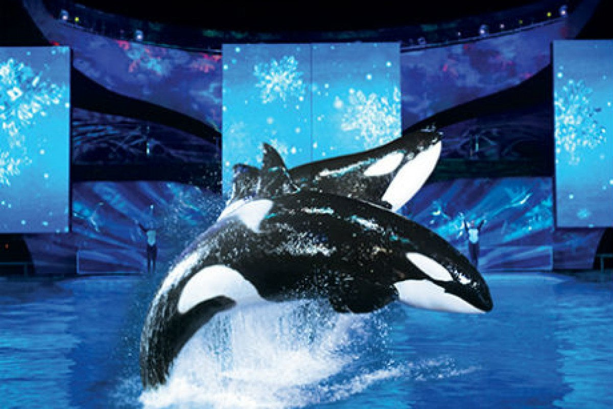 Natal do Sea World