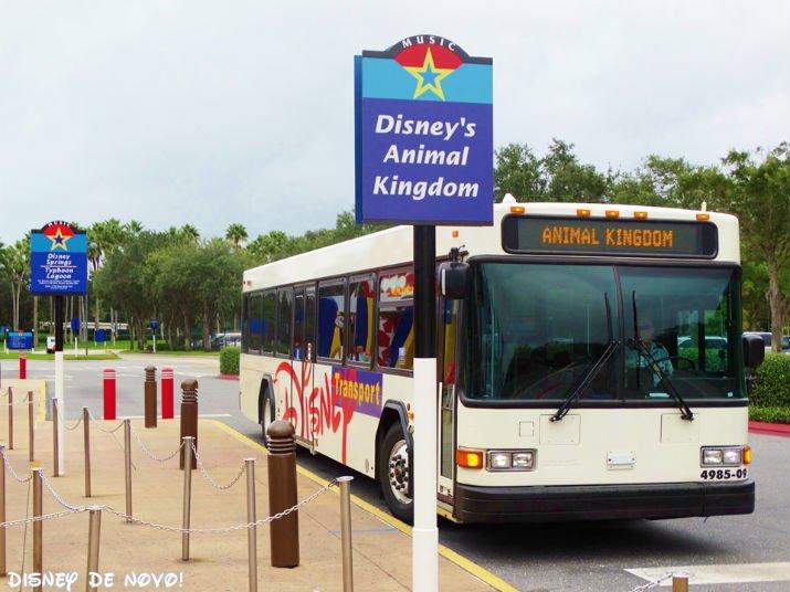 Benefícios dos hotéis da Disney onibus