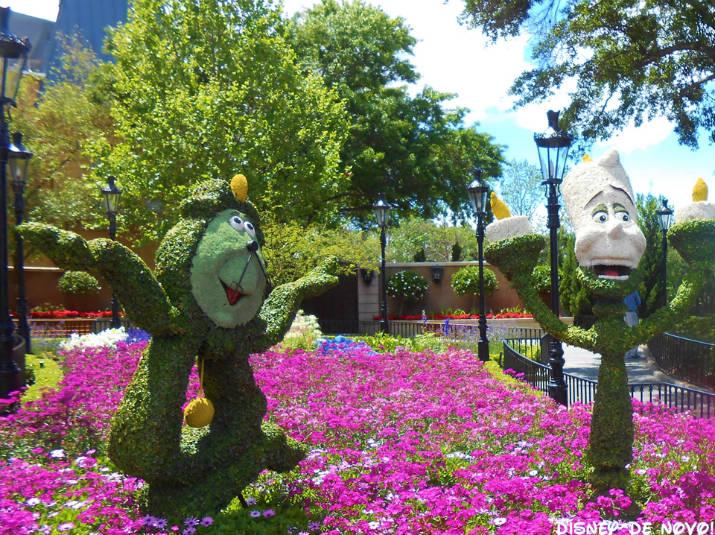 Flower and Garden Epcot Franca