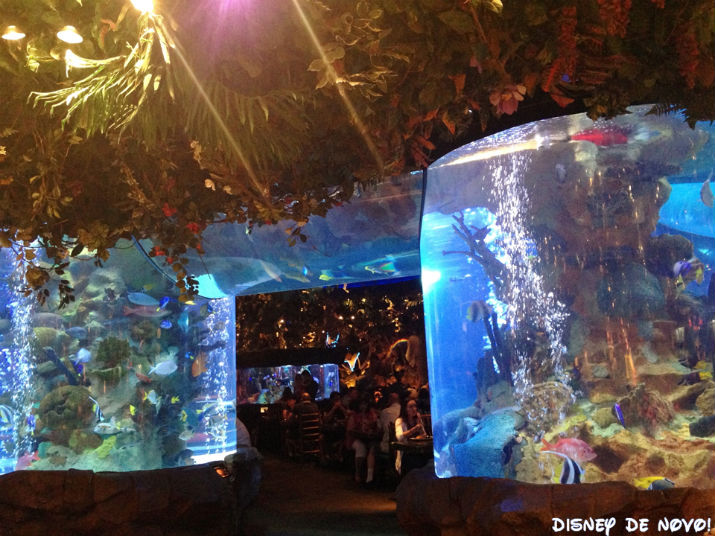 Rainforest_Cafe_Disney_Springs_Aquarios