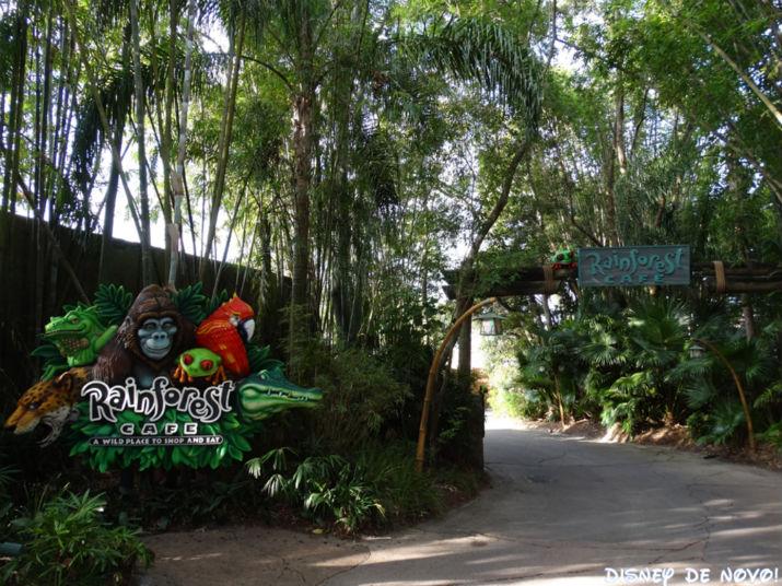 Rainforest Cafe Orlando Animal Kingdom