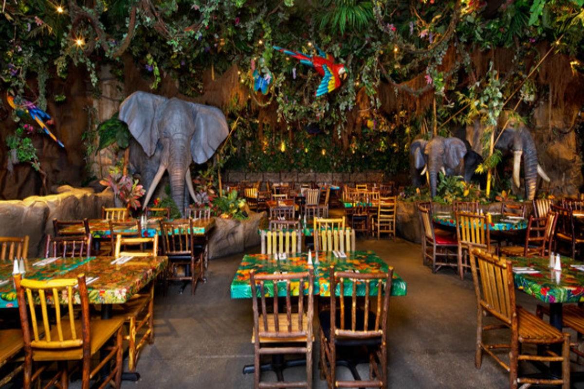 Rainforest Cafe — refeição na floresta em Orlando