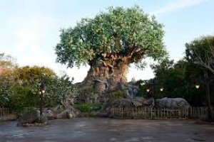 Parques de Orlando Animal Kingdom