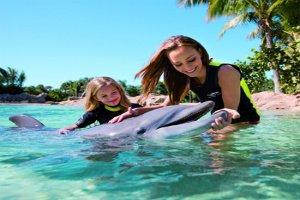 Parques de Orlando Discovery Cove