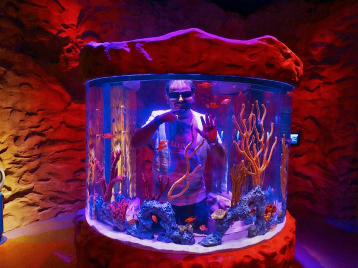 Aquario_Sea_Life Orlando_Aquario