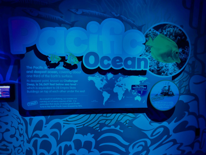 Orlando Sea Life Aquarium Pacifico
