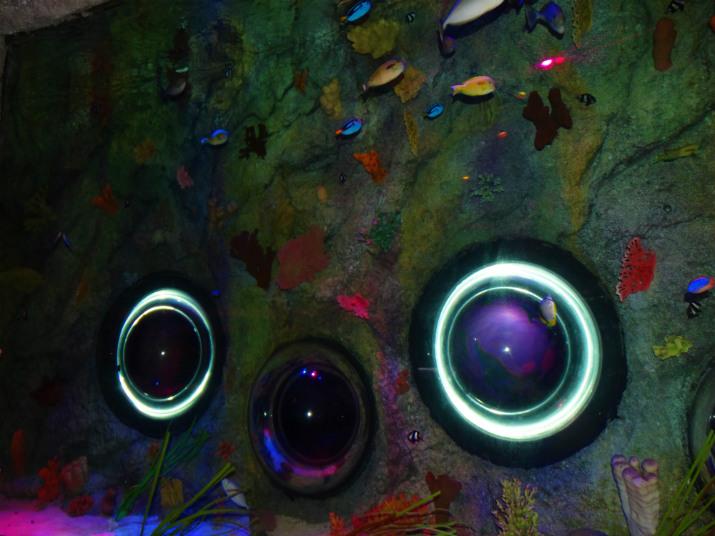Aquario_Sea_Life Orlando_tubos