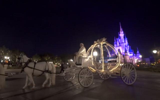 Que sonho! Casamento a noite no Magic Kingdom!