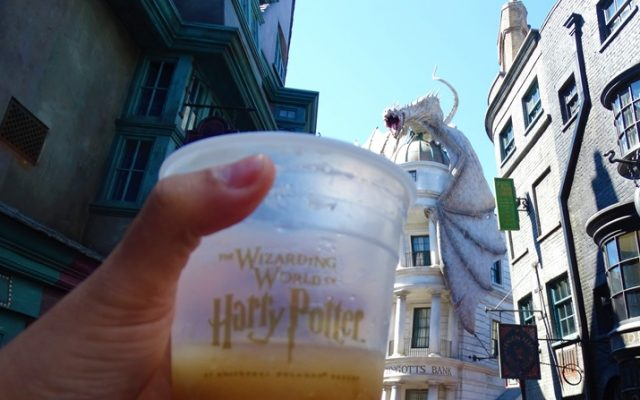 Cerveja Amanteigada do Harry Potter na Universal