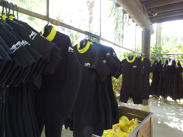 Discovery Cove Orlando roupa