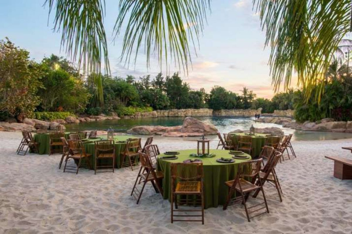 Paradise Nights — novo jantar no Discovery Cove