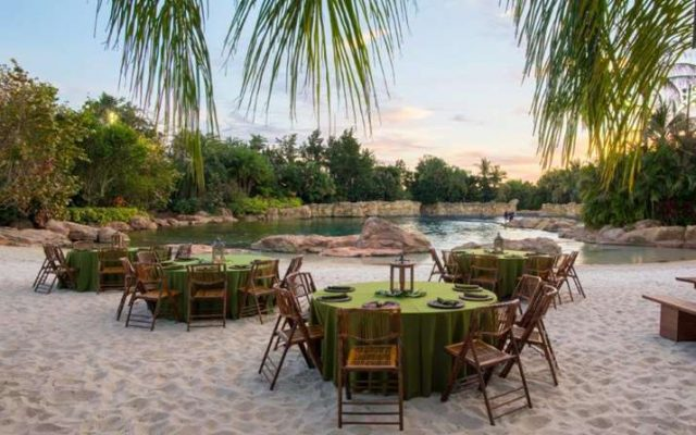Paradise Nights – novo jantar no Discovery Cove