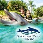 Tipos de Ingressos Discovery Cove