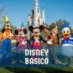 Tipos de Ingressos Disney Básico