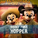 Tipos de Ingressos Disney Hopper