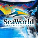 Tipos de Ingressos Universal Sea World