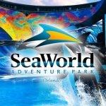 Tipos de Ingressos Universal Sea World