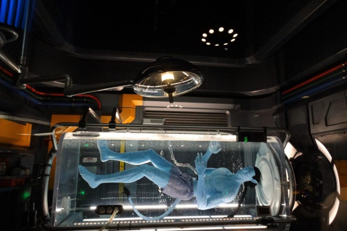 Satu'li Canteen: restaurante do Avatar na Disney