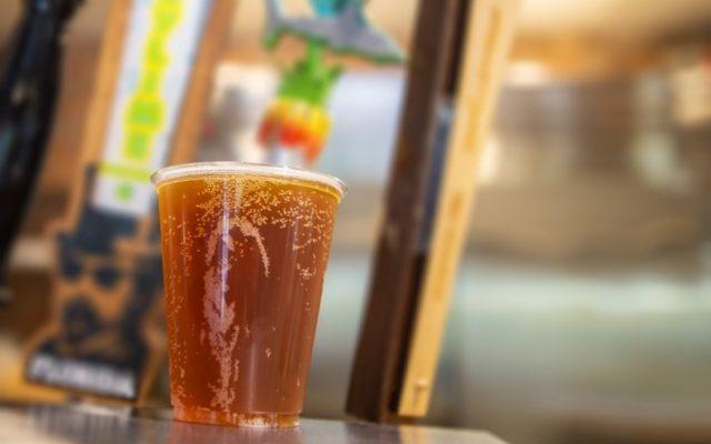 Festival de Cerveja Artesanal no Sea World