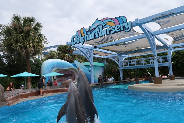 Sea World Dolphin Nursery