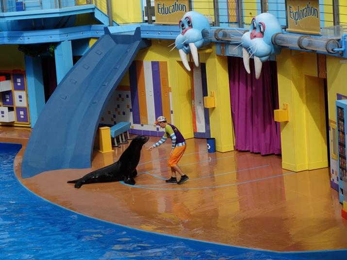 Sea World Show Clyde Seamore Leões Marinhos