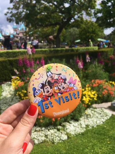 Disney California Bottons comemoração