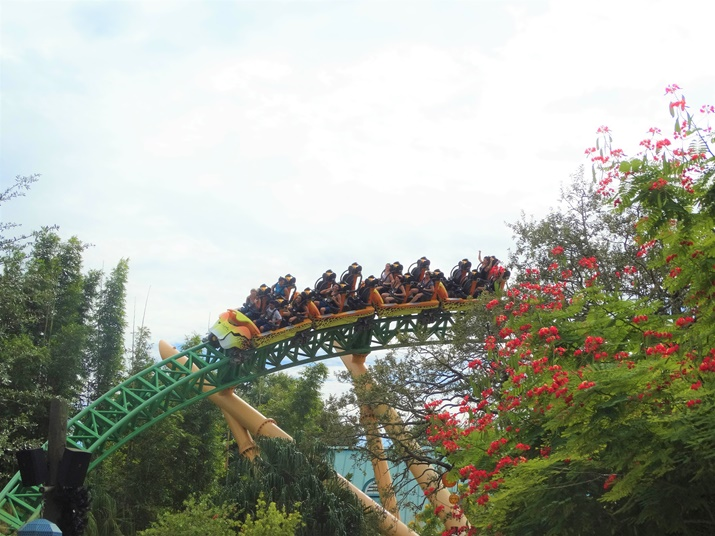 busch gardens Cheetah Hunt