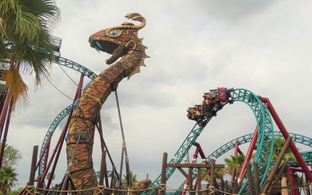 10 motivos para visitar o Busch Gardens