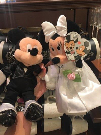 Casamento na Disney Pelúcia