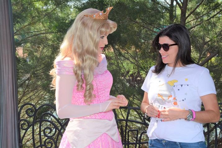 onde encontrar as princesas da disney Aurora