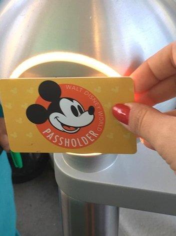 Passe Anual Disney Cartão
