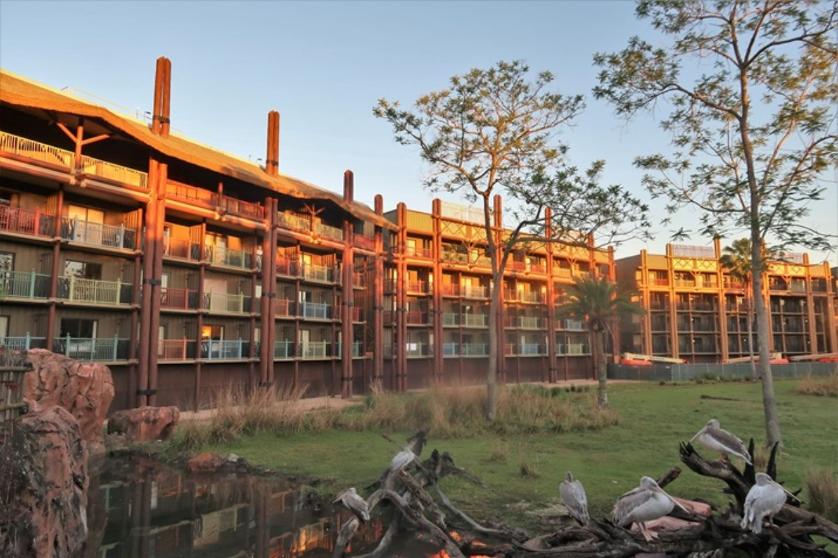 Animal Kingdom Lodge: hotel de luxo da Disney com animais