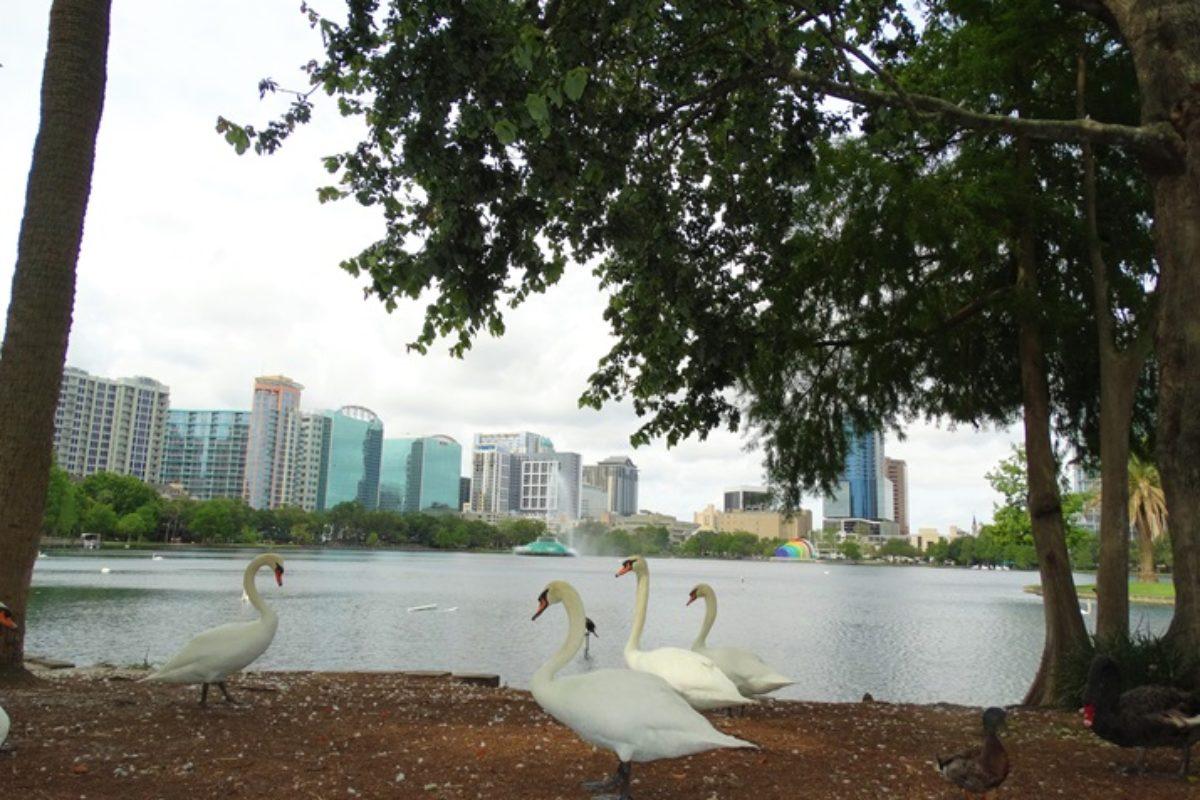 Lake Eola: programa gostoso em Orlando
